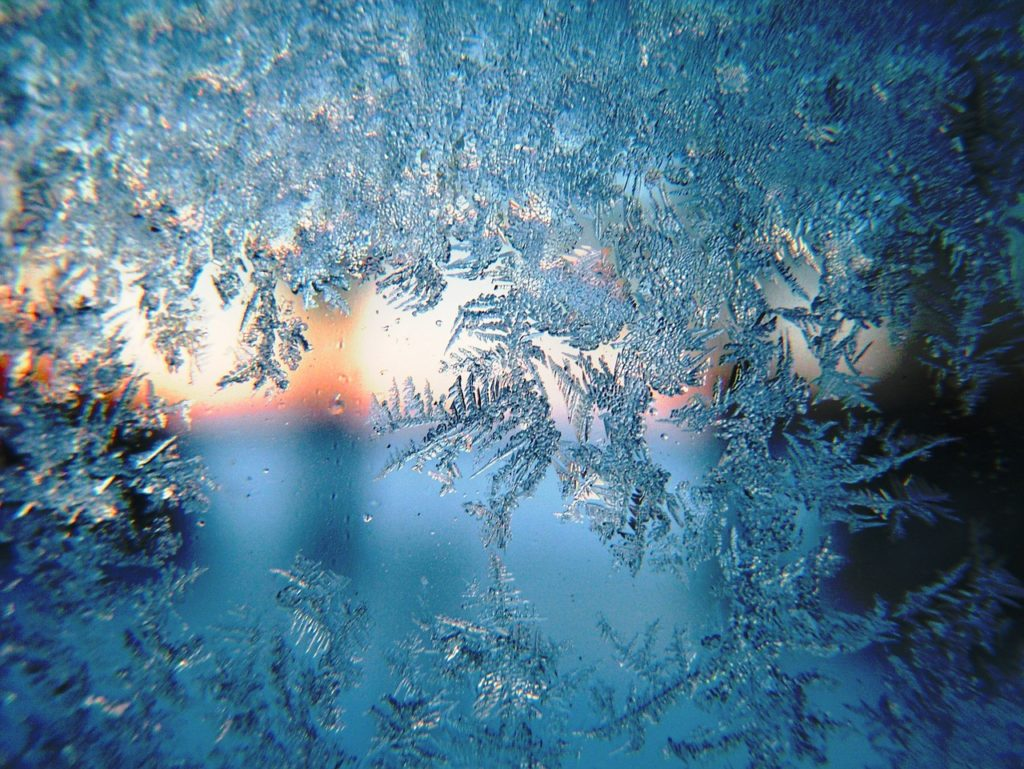 Morning Frost (closeup)