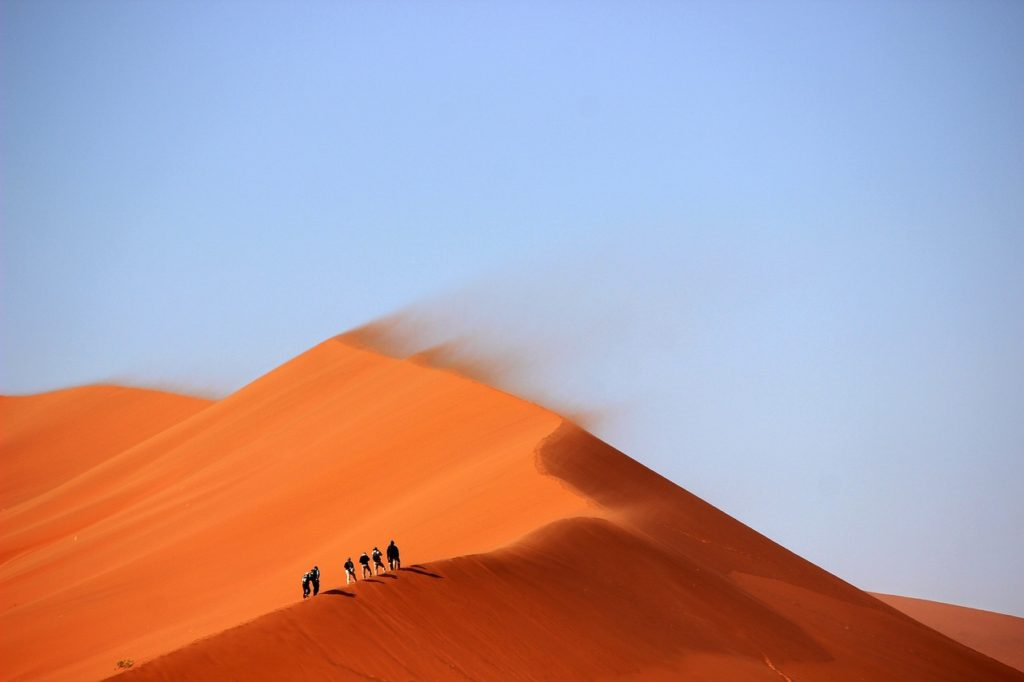 Group of people trying to find water in the desert