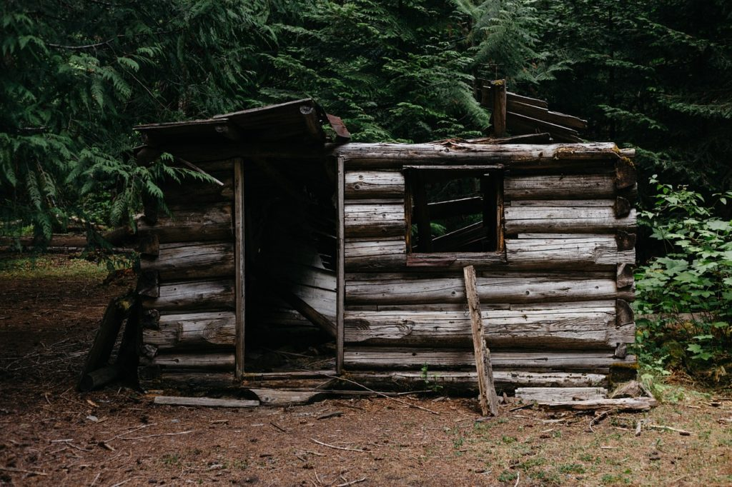 Wilderness Cabin Shelter